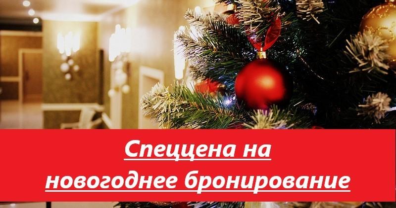 Специальная цена на новогоднее бронирование
